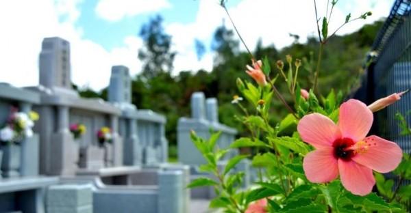 沖縄でお墓を建てる。情報収集で安心できる5つのポイント