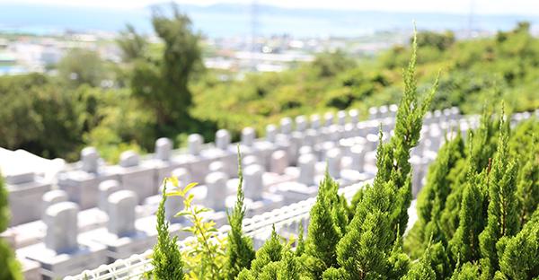 遠い沖縄のお墓を引き継ぐ。遠方でも継承した体験談とは