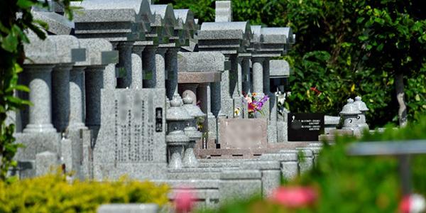 沖縄で増えた兄弟墓。名義や継承で役立つ3つの基礎知識