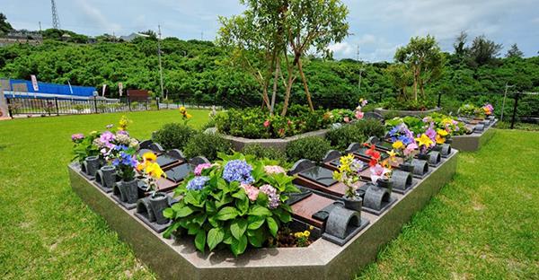 沖縄の樹木葬で故郷を眺める。全国的な樹木葬との違い