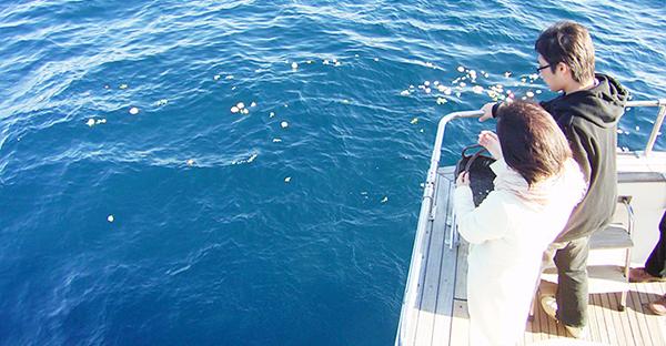 沖縄の海洋散骨で気になる法律。遺骨は散骨して良いの?