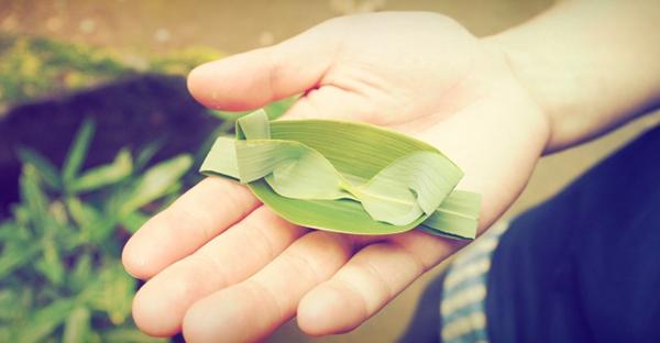 「アブシバレー」は旧暦四月☆「虫払い」の儀式とは